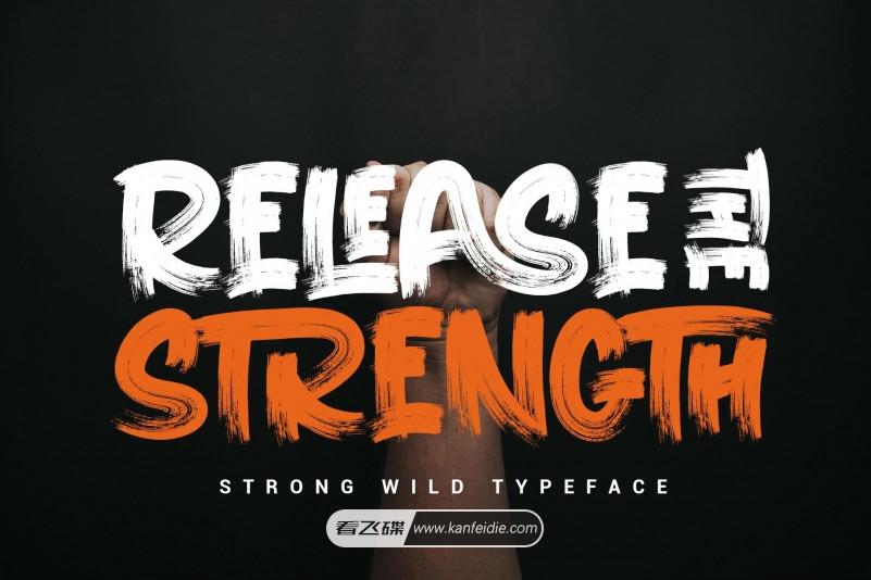 RELEASE THE STRENGTH是一款非常有趣的干笔刷效果的字体,自带了斜体和连笔效果,效果看起来非常自然逼真,并带有粗糙的纹理。非常适合品牌设计,标志,电商设计、产品包装,海报,邀请函,贺卡,新闻标题,博客等各种设计场景。