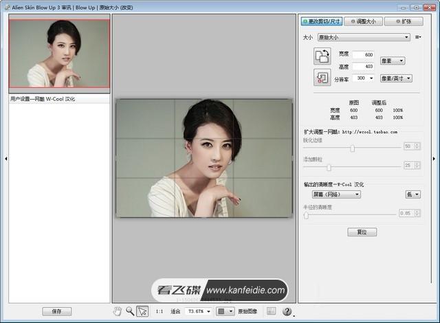 PS图像无损放大插件 Alien Skin Blow Up 3.1.4.284 中文汉化破解版免费下载