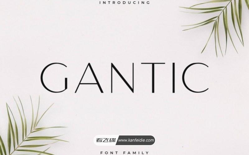 Gantic 极简纤细的无衬线英文字体