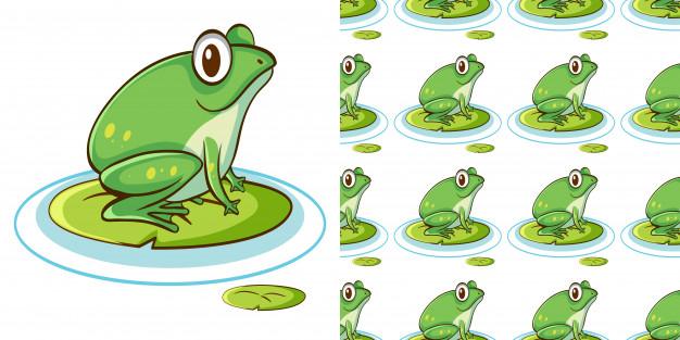 睡莲上的绿色青蛙矢量图下载
