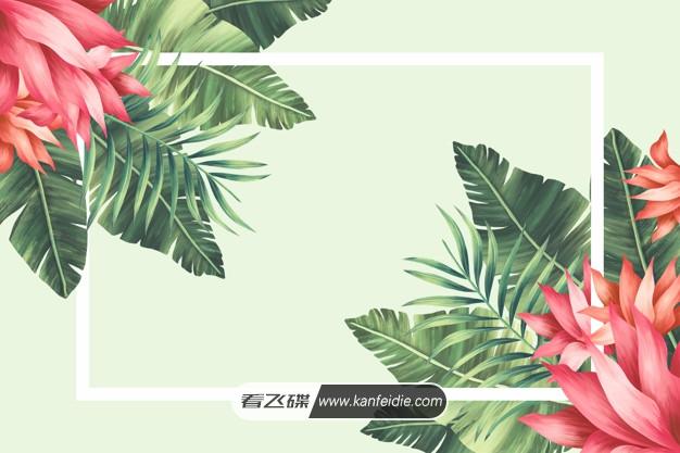 热带花卉边框与手绘叶子海报背景素材