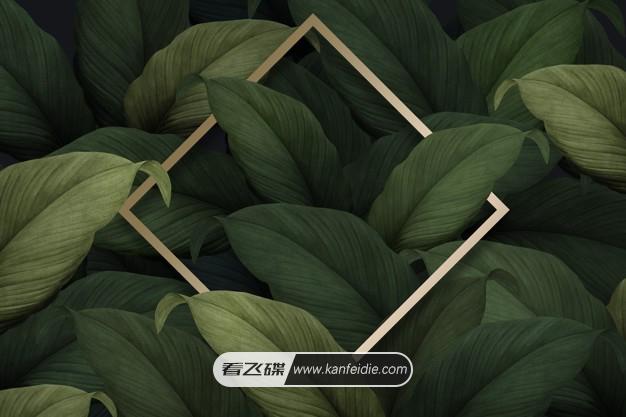 墨绿色的热带树叶插画 PSD背景素材