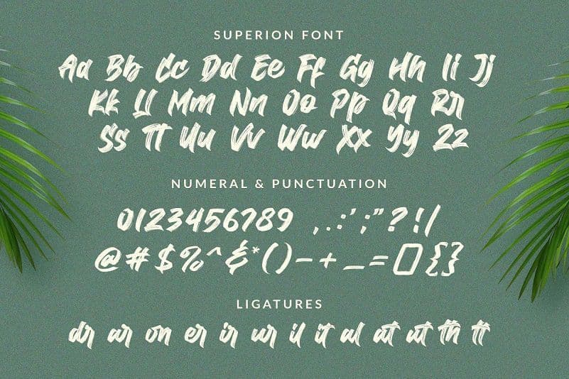 Superion水墨毛笔风格PS英文字体