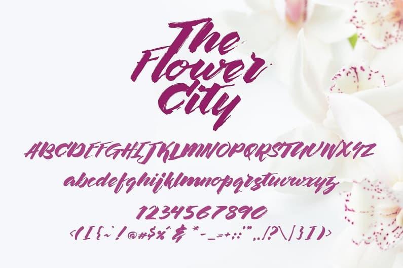 The Flower City大气英文毛笔书法字体