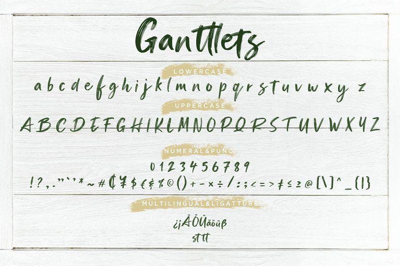 Ganttlets好看大气的ps英文毛笔书法手写字体