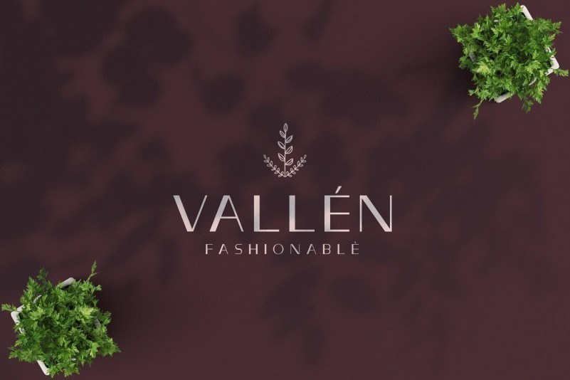 Vallèn简约时尚的无衬线ps英文logo字体下载