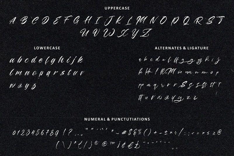 粗糙干笔刷效果的毛笔手写英文设计字体