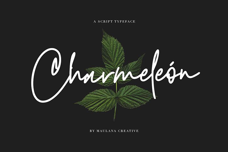 Charmeleon飘逸英文手写艺术签名字体下载