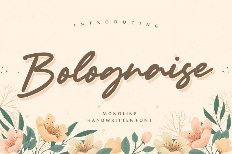 Bolognaise软头画笔效果的斜体手写连笔英文字体下载