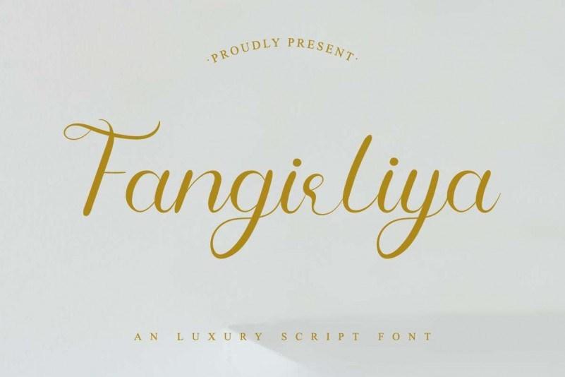 Fangirliya ins风格的文艺花体手写ps摄影英文字体下载