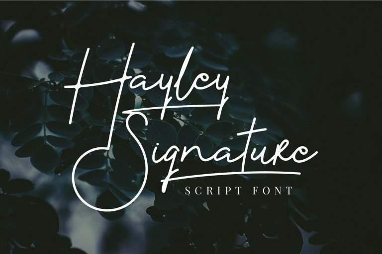 Hayley漂亮纤细的word艺术连笔手写签名字体下载