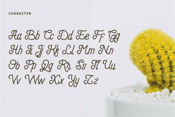 请柬常用英文字体下载 LOGO设计手写花体风格