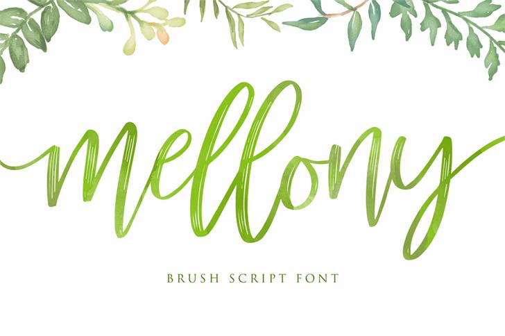 Mellony小清新ins风格纹理笔刷手写书法英文字体下载